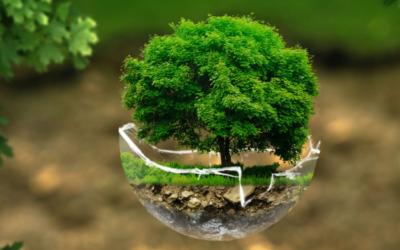5 consigli di risparmio tra ecologia ed economia